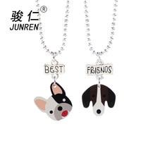 2 pz/set Best Friends Bel cane Bambini Ciondolo collane Per Cartoon acrilico di Fascino collane Amicizia