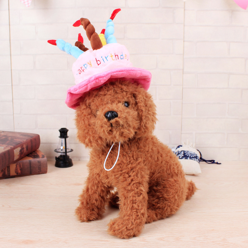 Pet Dog Cat Birthday Cake Hat