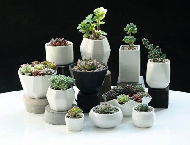 office flower pots. Home Decoration Ceramic Flower Pots Planters Desk Top Office Bar Shop Wedding Decor Gifts White N