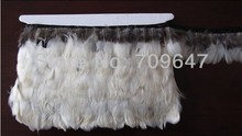 New!Hot!10Meters/Lot Height5-6cm Natural White colour Lady Amherst Pheasant Feather Trim Fringe FREESHIPPING 50pcs lot 6 10cm pheasant feathers lady amherst feather orange red tipped wholesale lot freeshipping