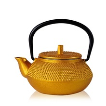 High Quality Cast Iron Teapot Japanese Tetsubin Tea Pot Kettle Drinkware Tools 300ml Kung Fu Infusers Stainless Steel Net Filter