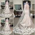Hot Sale 2015 Fast Delivery Wedding Veils Long Elegent Veil With Lace Bridal Gown Veil Beauty Bride One Layer Long In Stock