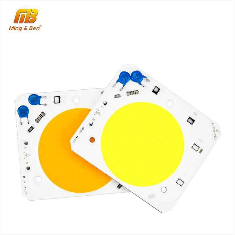 LED COB Chip Smart IC No Need Driver 30W 50W AC220V 110V Anti Surge Design High Brightness Chip For DIY LED Floodlight Spotlight