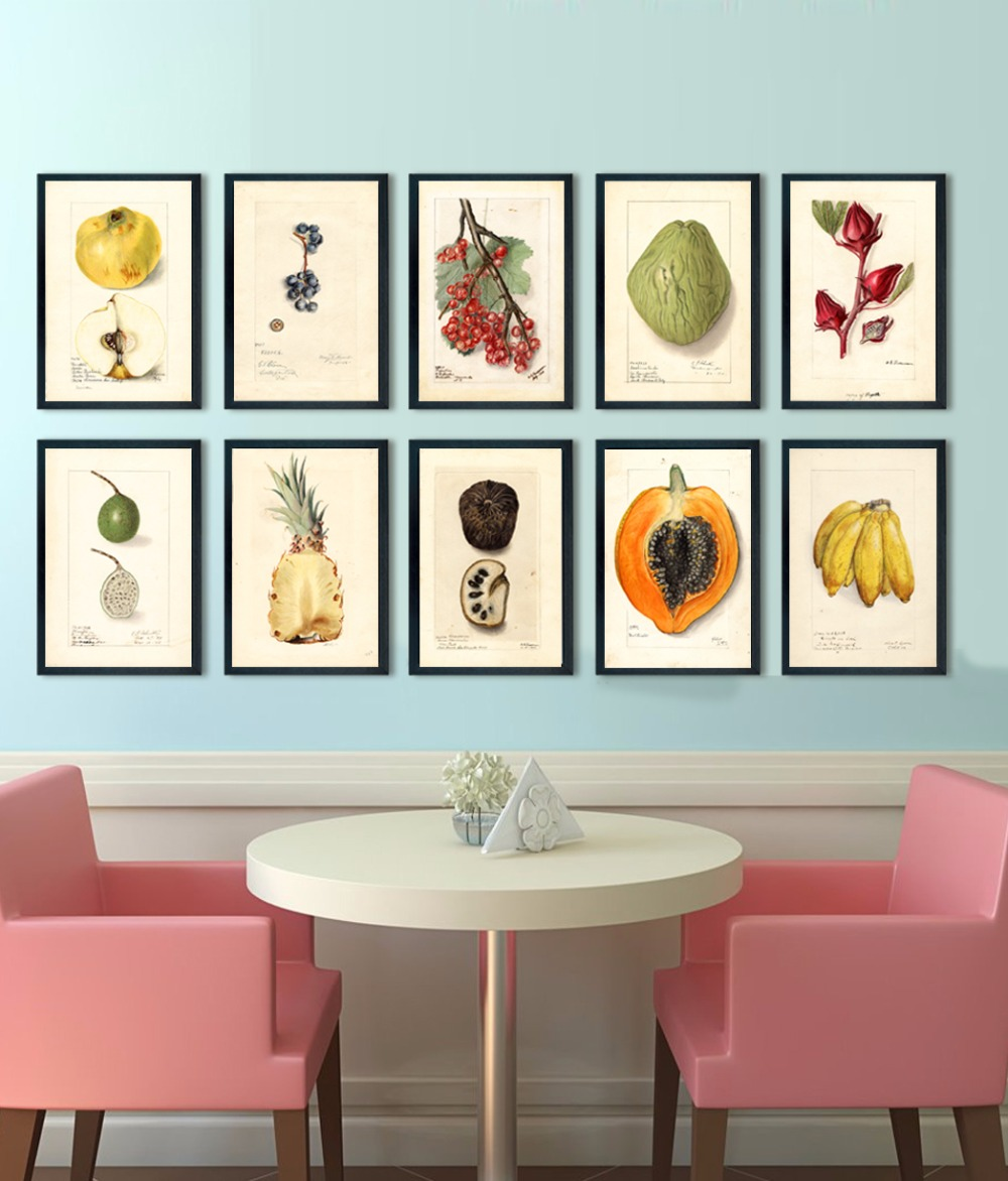 Purple And Yellow Kitchen Wall Art Unframed Kitchen: Vintage Fruit Illustration Fruit Art Prints A4 Or 8*12