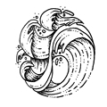 Волнистые водонепроницаемые Временные татуировки наклейка-Татуировка флэш Дети Тату стикер s Tatuajes Temporales A Prueba De Agua - фото