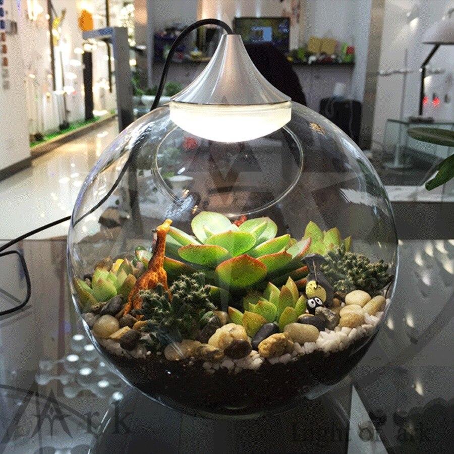Diy Dekoration Miniatur L Größe Glas Topf Led 3 Watt Tischlampe Fee Terrarium Blumenerde Garten Decor Miniatur Microlandschaft Led-lampen