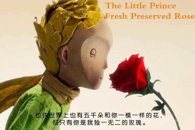 fd87b0a88b3 EMS 3 PÇS LOTE O Pequeno Príncipe Imortal Tampa De Vidro Fresco Preservado  Flor Rosa