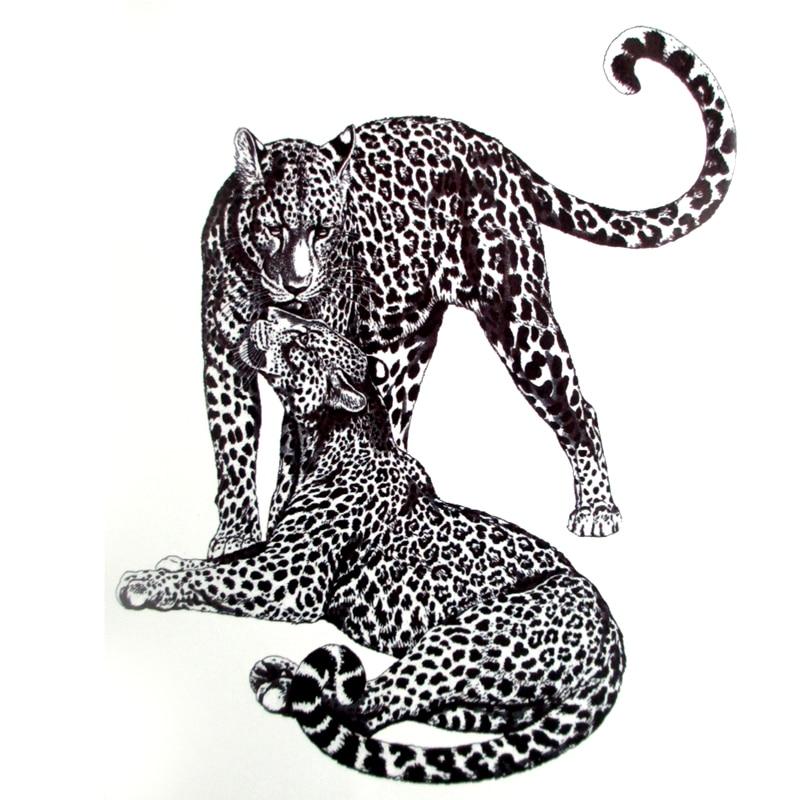 минеральные воды картинки кошки ягуар графика комплекс мозырь