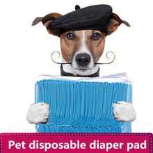 Dog Puppy Pads Diapers Super Absorbent Pet Baby Born Cat Training Clean Urine mat pee pad Cleaning Supplies