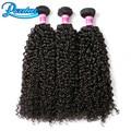 3 Bundle Предложения Необработанные Виргинских Бразильских Волос Кудрявый Вьющиеся Переплетения Дешево Бразильские Волосы 3 Пучки Afro Kinky Вьющихся Волос, Плетение