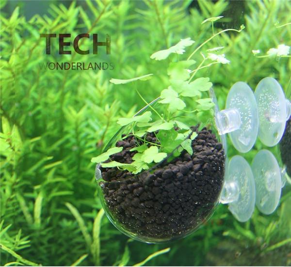 Aquarium decoration fish tank Mini Crystal Glass Pot Polka Water potted aquatic planting cylinder cup