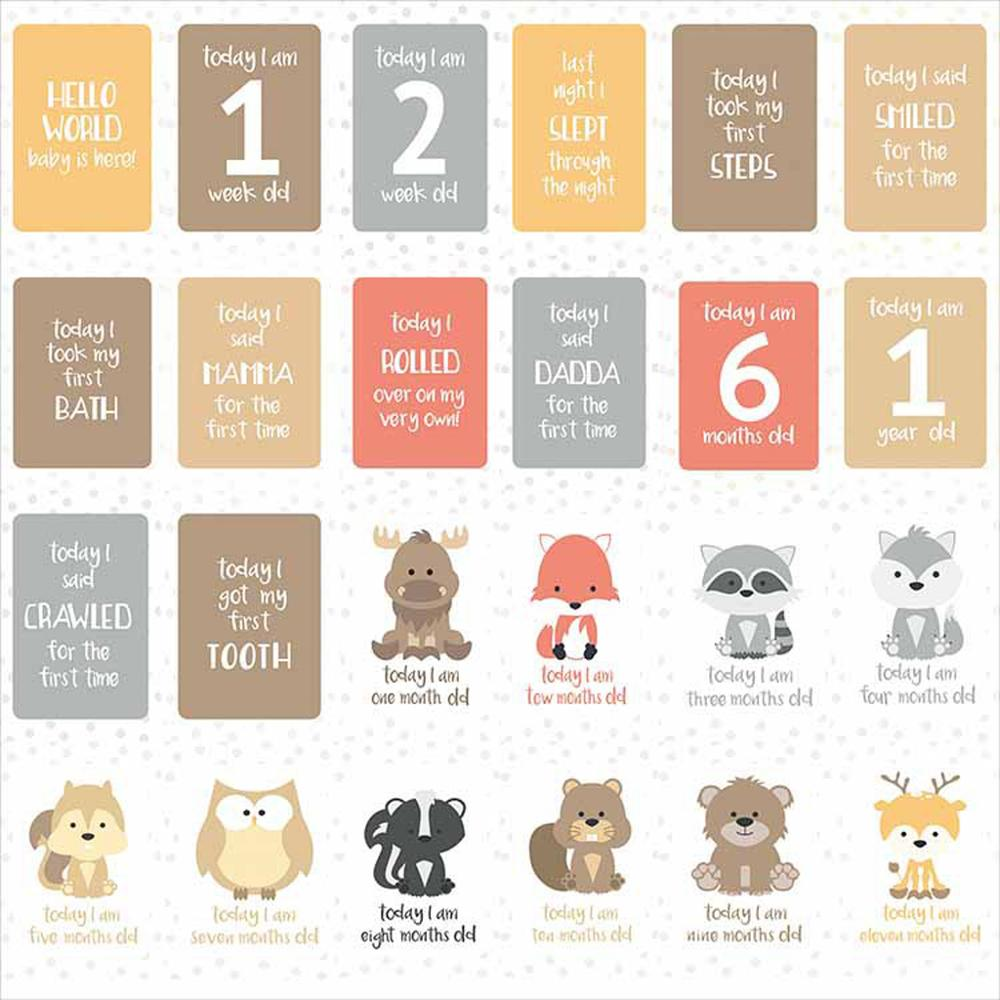 Cards Memory Monthly Baby Pregnant-Women Photograph For Fun 24pcs/Set