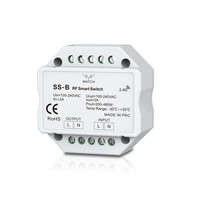 SS B + R1;AC Triac RF + Push Dimmer & Switch;100 240VAC input;200 480W output(need to buy the RF remote separately)