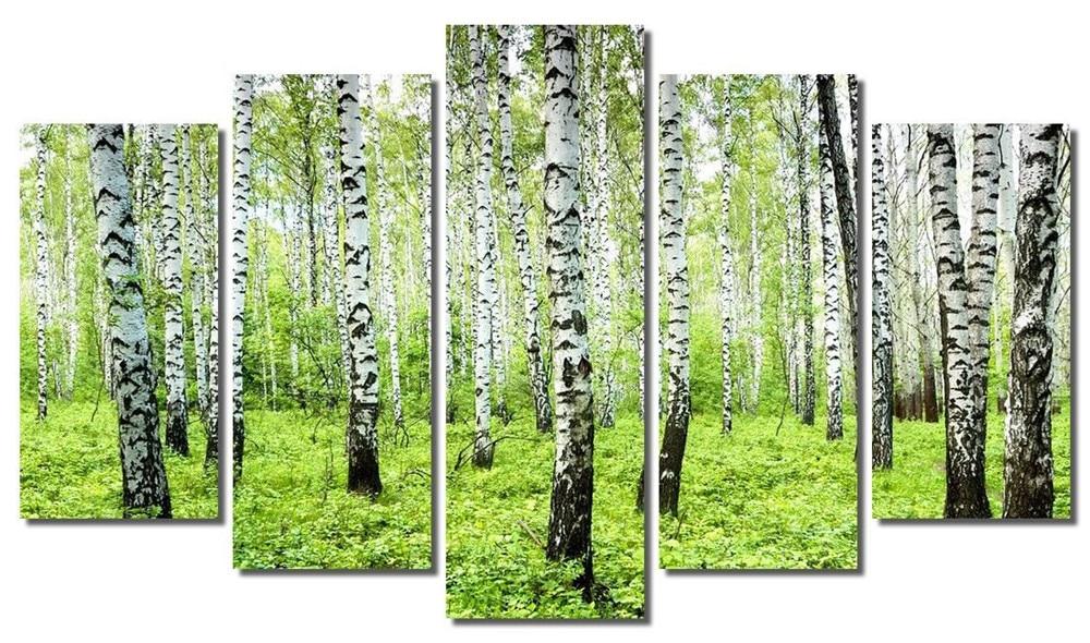 온라인 구매 도매 자작 나무 패널 중국에서 자작 나무 패널 ...