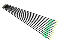 Longbowmaker 12PCS 33 Inches Fiberglass Target Practice Arrows F2GWT1