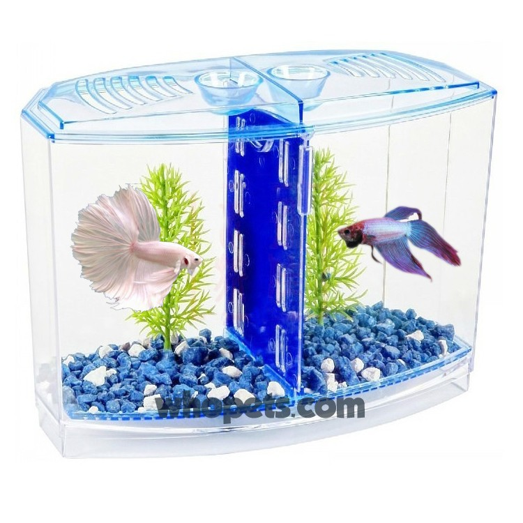 Betta fish tank betta house double easy tank for small for Fish tank house