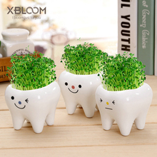 Cute tooth pot vase creative ceramic cartoon flower succulent home decoration crafts dental clinic gift toy