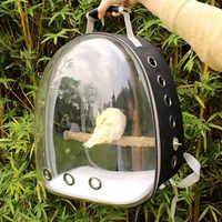 Perroquet sac à dos animal de compagnie Cage de transport en plein air voyage confortable respirant transparent transporteur sac à dos espace Capsule avec support
