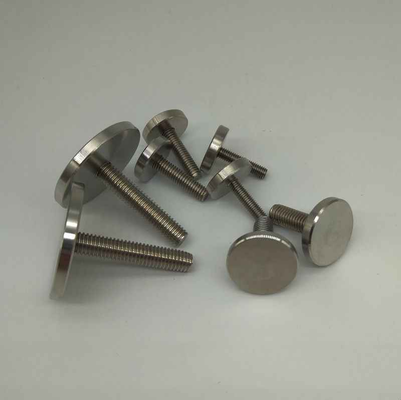 12pcs M12 Stainless Steel Mirror Hand Twist Screws Bolts Fixed Round