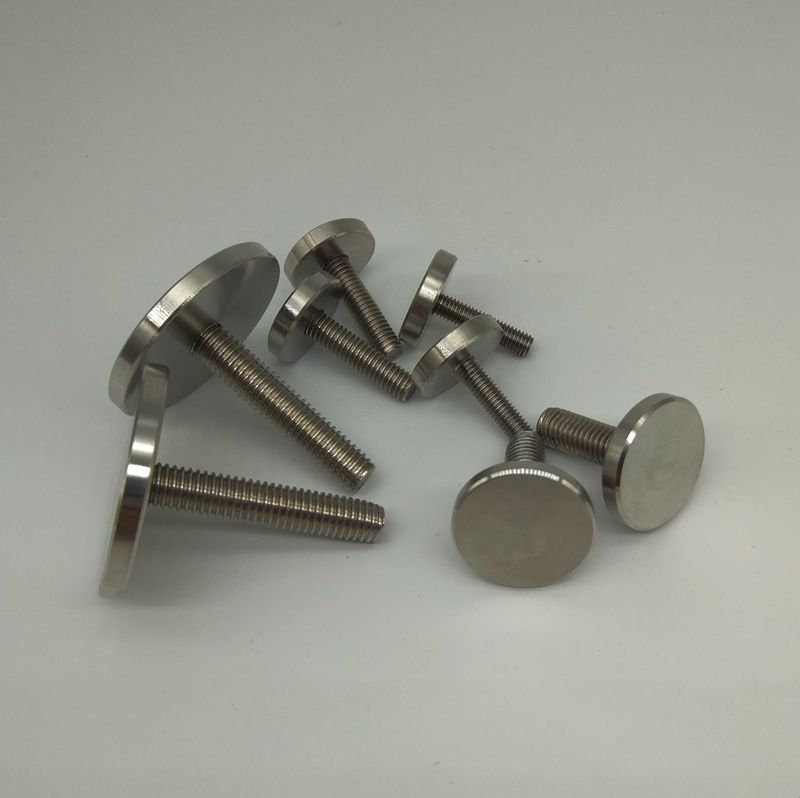 M3 M4 M5 Thumb Knurled Screw Mirror Screws GB835 Stainless Steel