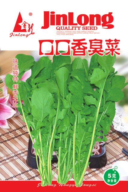 Aliexpresscom Buy 1pack 1000seeds Arugula SeedRocket Salad