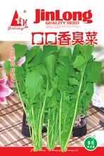 1pack 1000+seeds Arugula Seed,Rocket Salad,eruka siata Vegetable Garden Seeds Free Shipping