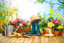 hot deal buy laeacco green spring blossom flower garden tools wooden board baby child scenic photo backgrounds photo backdrops photo studio