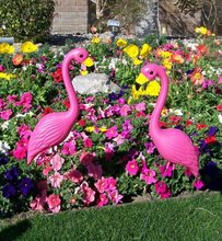 Pink Flamingo Novelty Yard Lawn Art Garden Ornaments (Pack of 2)