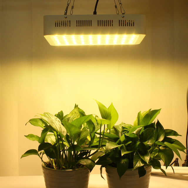 300w 60 5w Led Grow Light Solar Imitation Full Spectrum Growing Lighting Lamp For Hydroponic