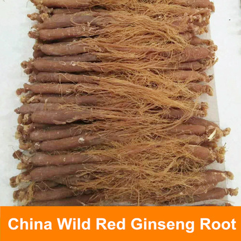 China Wild Natural Changbai Mountain Renshen Dry Red Ginseng Root