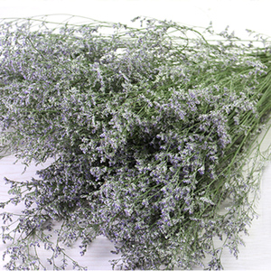 Image 4 - Bonita flor Natural pequeña flor seca para fiesta, hogar, dormitorio, sala de estar, oficina, decoración artesanal, libro de recortes de flores