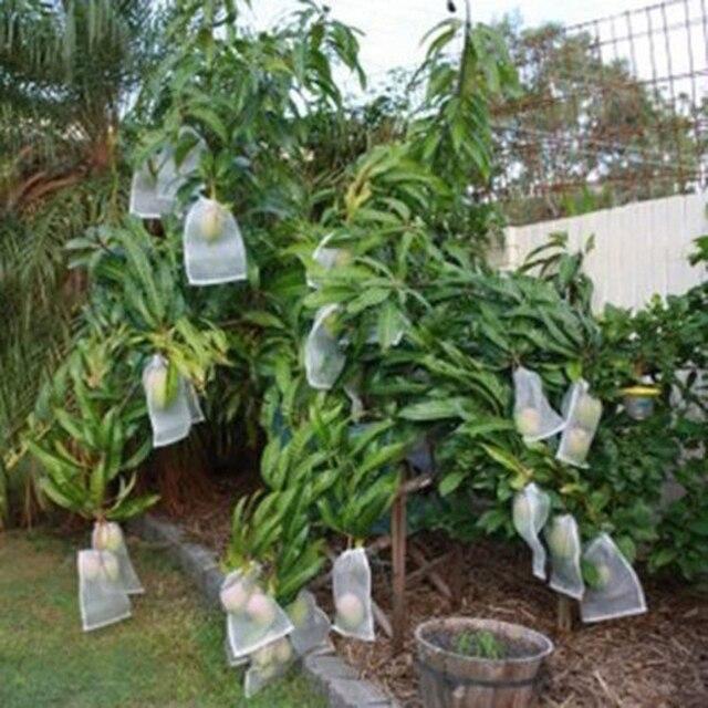 50 Pcs Bianco Traspirante Pianta Da Giardino Frutta verdura Proteggere Coulisse