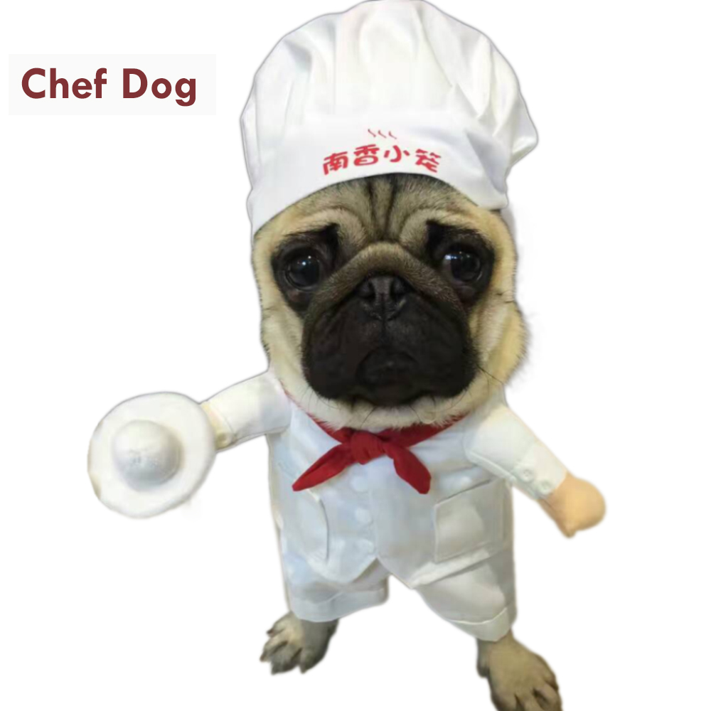Funny Pet Costumes Star Chef Cosplay Suit Chef Cat Apparel Halloween Christmas Outfit Clothes For Puppy Dog Costume for a cat