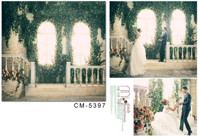 Жизни Magic Box 150x200 см для виниловых фотография большой Оконные рамы листовые свадебное фото Задний план cm-5397