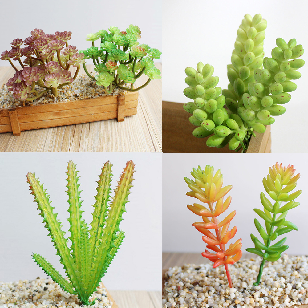 8 kinds of plant garden succulent grass desert artificial for Landscape arrangement