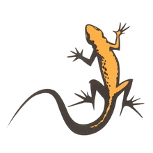 1 Pc 15x13cm Gecko Printed Car Waterproof Vinyl Sticker Decals Body Window Bumper Cling Decorations