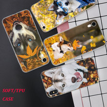 Silicone Phone Case Husky Puppy Dog Printing for iPhone XS XR Max X 8 7 6 6S Plus 5 5S SE Matte Cover