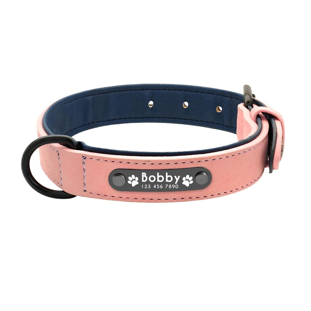 collier pour chien avec nom et numero