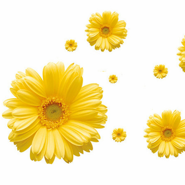 Plants Flower Wallpaper Daisy Stickers Yellow Wall