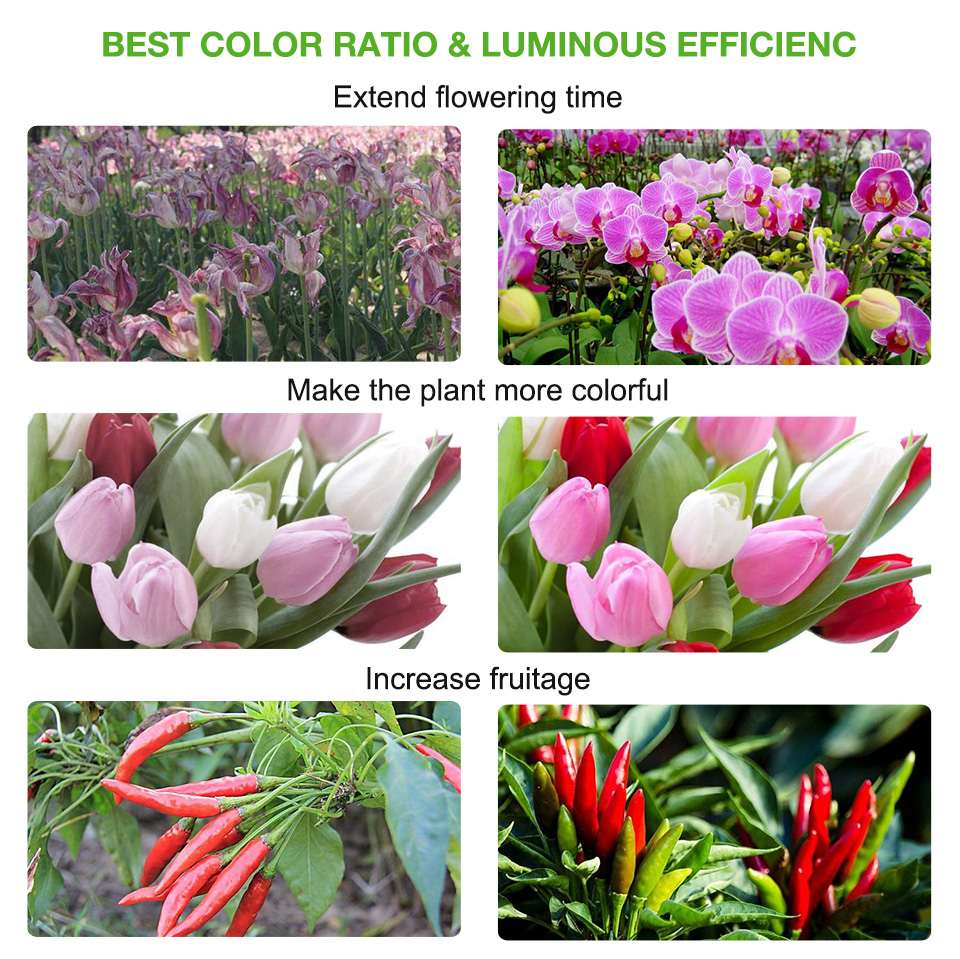 Discount RAYWAY Led Grow Light Full Spectrum T5 Tube LED Indoor Plant Lamp Hydroponic system Greenhouse LED grow tent