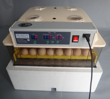 Digital Automatic 96 Egg Control Temperature Egg Incubator for Chicken Duck Quail Goose Egg