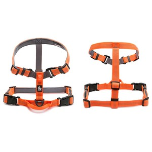 Image 3 - Truelove Neoprene Padded Dog Pet Body Harness With Handle Strap Security Belt Dog Chest Collar Pet Shop Dog Accessories Dropship