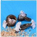 6 unids/set Kawaii Conejos Lindos Modelos de Figuras de Acción Juguetes 6 Estilos Conejo Niños Juguete de Regalo para Niños Decoraciones Encantadoras