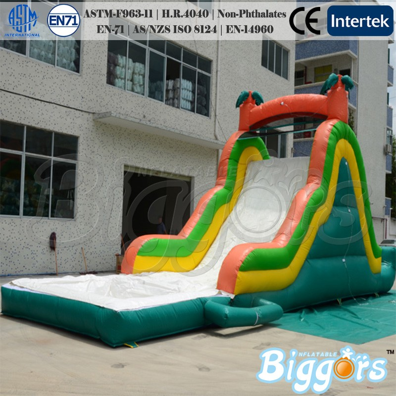 Giant Adults Inflatable Water Slide With Pool For Amusement Park bears carton inflatable slide for water park ground pool