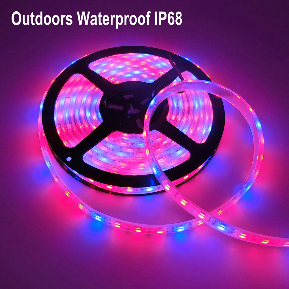 Led grow light full spectrum 5m led strip light 5050 led flower led grow light full spectrum 5m led strip light 5050 led flower plant phyto growth lamps for greenhouse hydroponic plant growing in led grow lights from aloadofball Choice Image
