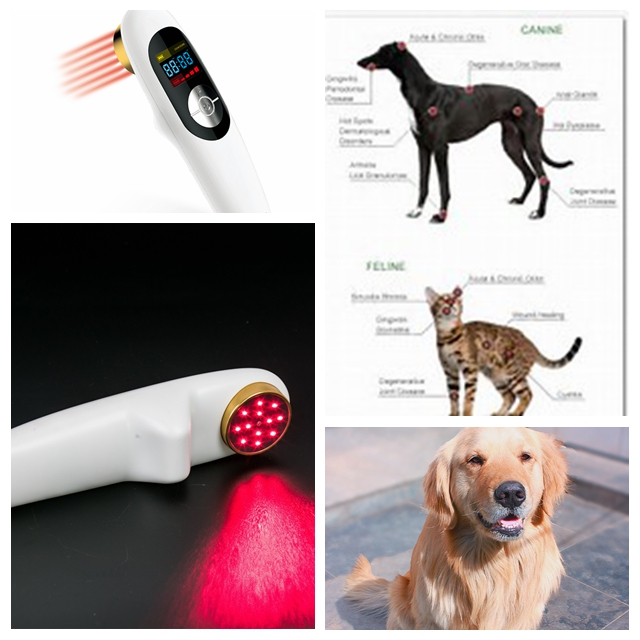 Hot selling wounds therapy cold laser therapy for knees home remedy small size sprain therapy light therapy for pain management home remedy