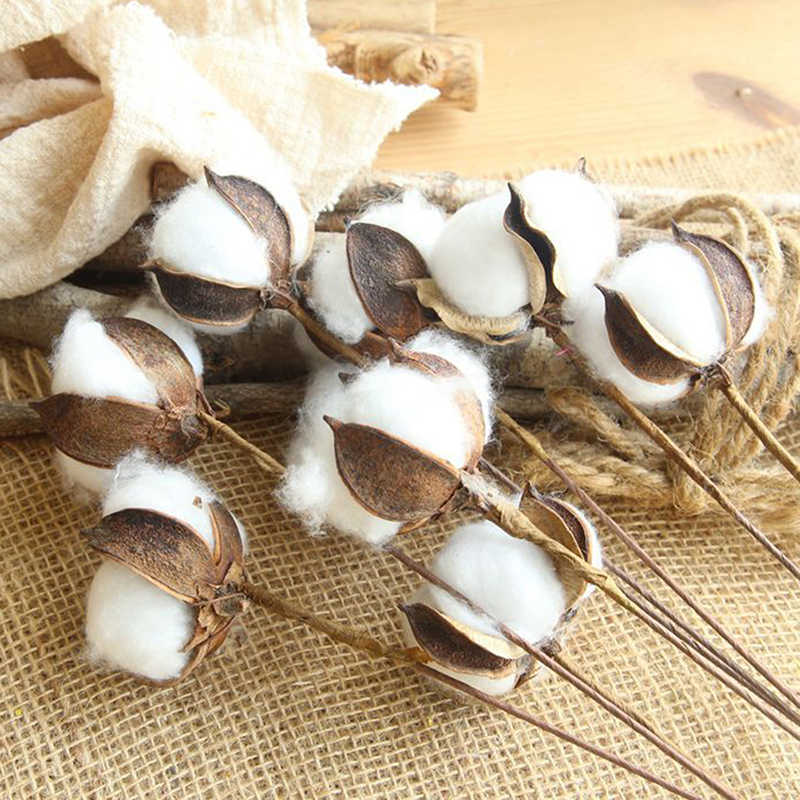 5PCS Natural Dried Cotton Flower Heads Dried Pressed Flowers DIY Crafts Wedding Party Decoration