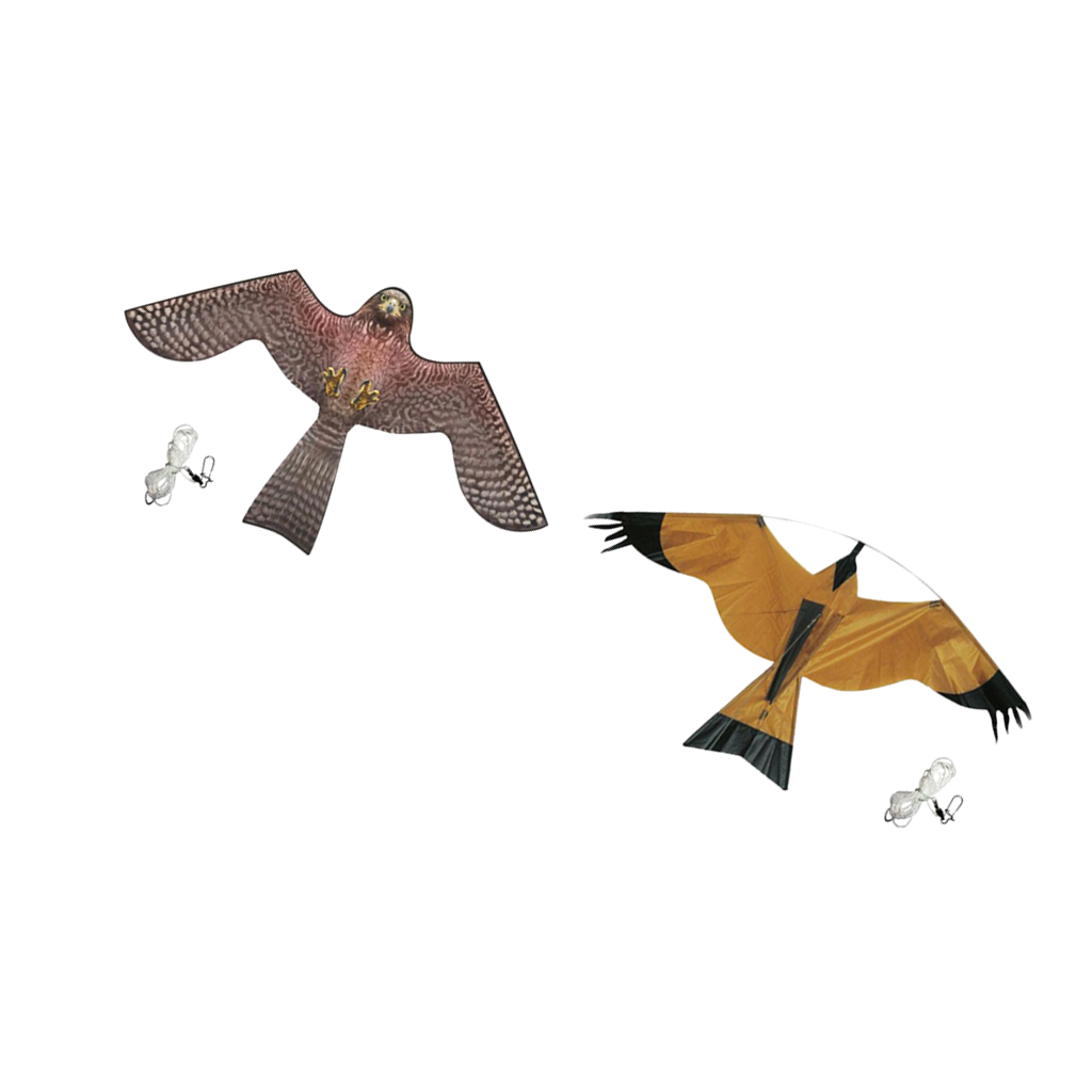 Hawk Bird Scarer Crop Scaring Hawk Kite for Scaring Birds From Crops And Off Buildings kite|Repellents| |  - title=