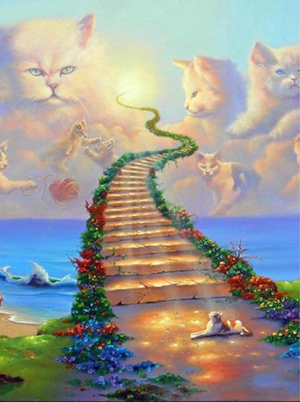 Χαριτωμένο γάτα τρυπάνι ρητίνη - Τέχνες, βιοτεχνίες και ράψιμο - Φωτογραφία 3