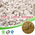 250gram Poria Cocos Extract/Indian Buead Extract/Tuckahoe Extract/30% Polysaccharide strengthen cellular immune